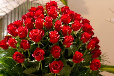 ابحث عن تعارف للزواج من مطلقة  او بنت اومدام 01021242387