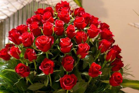 ارغب الزواج من مطلقة  او بنت اومدام 01021242387