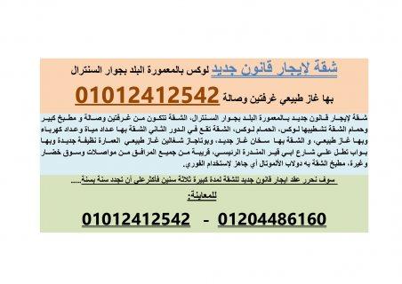 شقة لإيجار قانون جديد غرفتين وصالة بالمعمورة01012412542