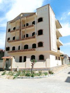 عمارة للبيع برج العرب الجديدة 340م2 ناصية
