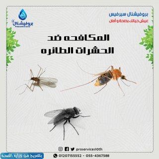 مكافحة الناموس-مكافحة الناموس-مكافحة الناموس/01068598882/