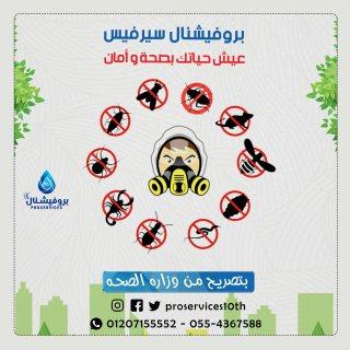 مكافحة الخنفساء العنكبوتية-مكافحة الخنفساء العنكبوتية/01068598882/