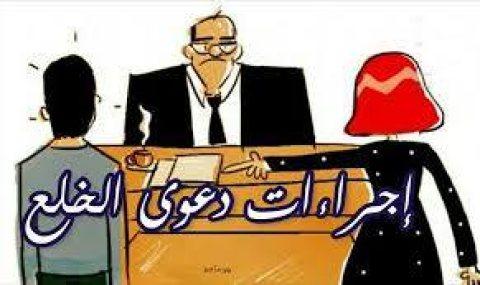محامى قضايا خلع المسلمين والمسيحين فى مصر